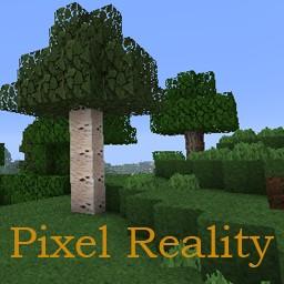 http://planetaminecraft.com/wp-content/uploads/2012/12/1c45c__Pixel-Reality-Texture-Pack.jpg