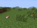 [1.5.1] Invincible Hamster Mod Download