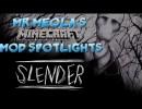 [1.6.2] Slender Reimagined Mod Download