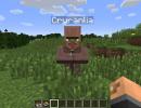 [1.12.2] Village Names Mod Download